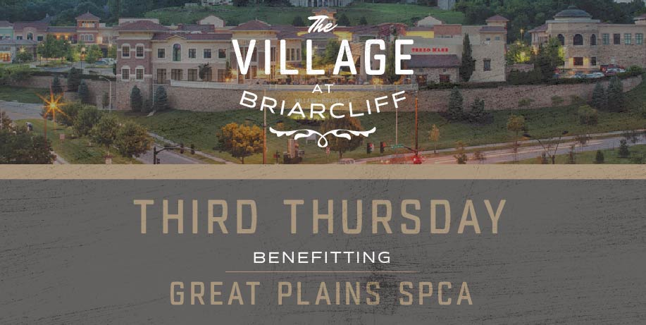 Shop for a Cause Every Third Thursday – The Village at ...